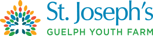 SJ Youth Logo